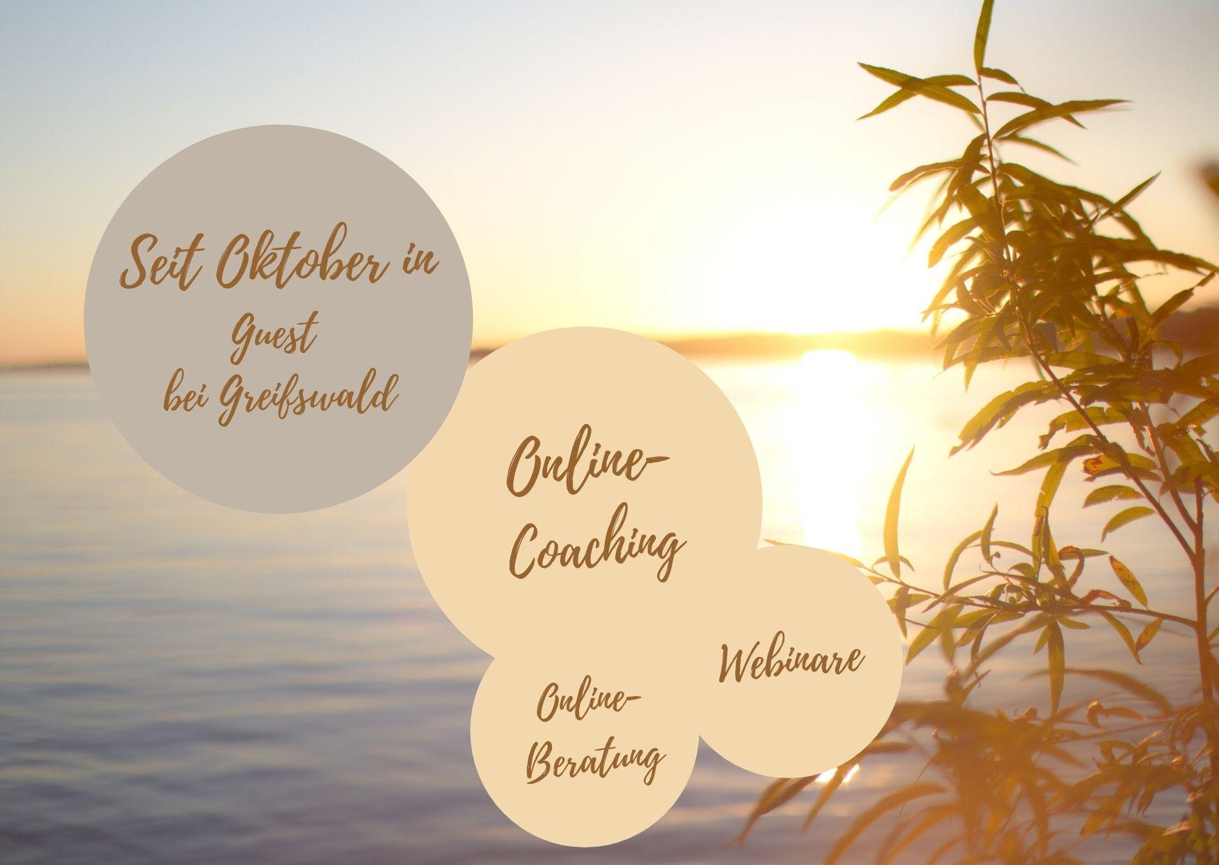 Online-Coaching 2